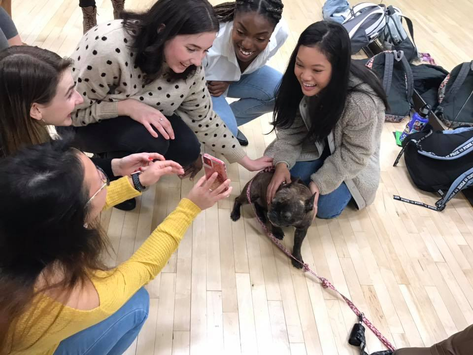 Group of female students petting a dog