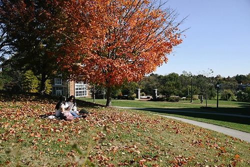 two students sit under a tree studying during fall at NDMU