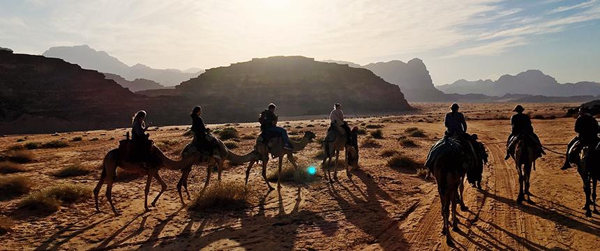 camel ride through a desert at sunset