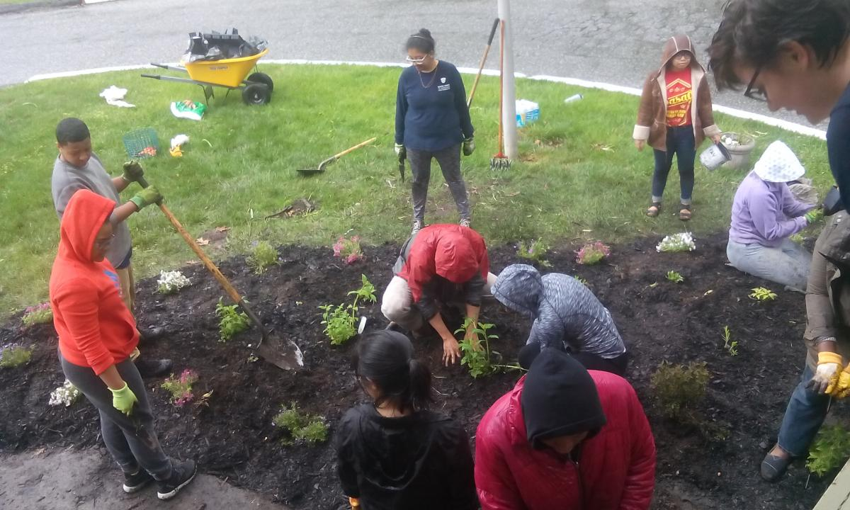 Tribeta students plant in pollinator garden